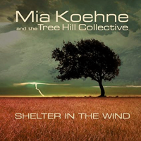 Shelter In The Wind