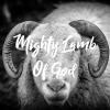 Mighty Lamb Of God - Single